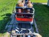 sprehod-z-vozic48dki